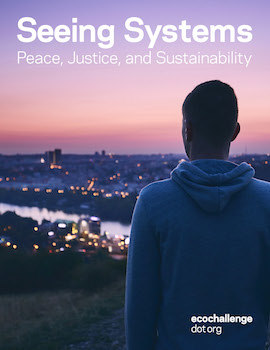 The cover of the Seeing Systems coursebook: A person in a hoodie with their back to us, looking over a lit-up city lined with water and a soft purple-pink sky at dusk.